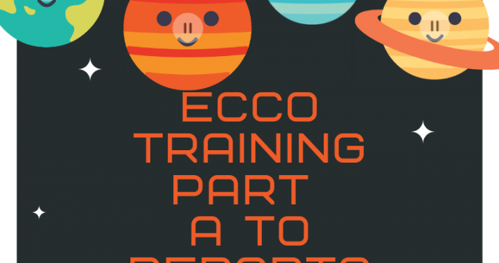 ECCO Training Part A - Reports (1)